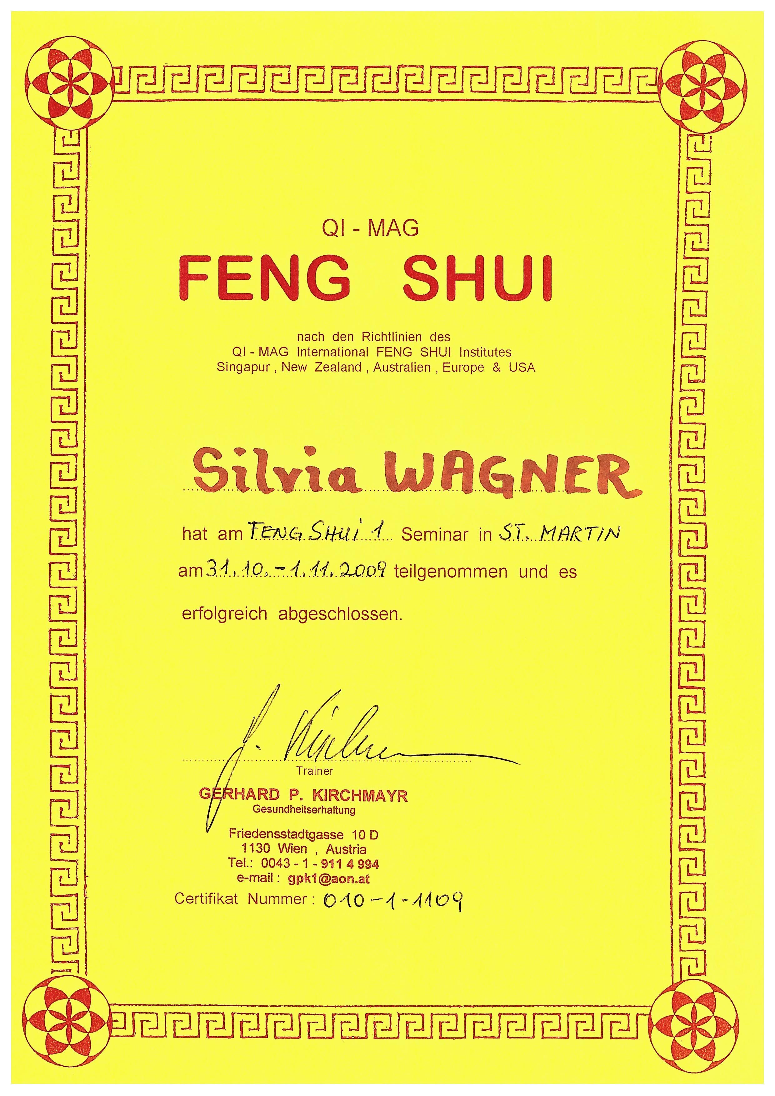 Feng Shui 2009